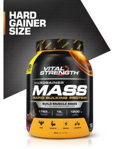 Vital Strength Hardgainer Mass Bulking Protein Powder
